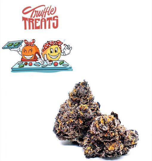 Buy Truffle treat strain